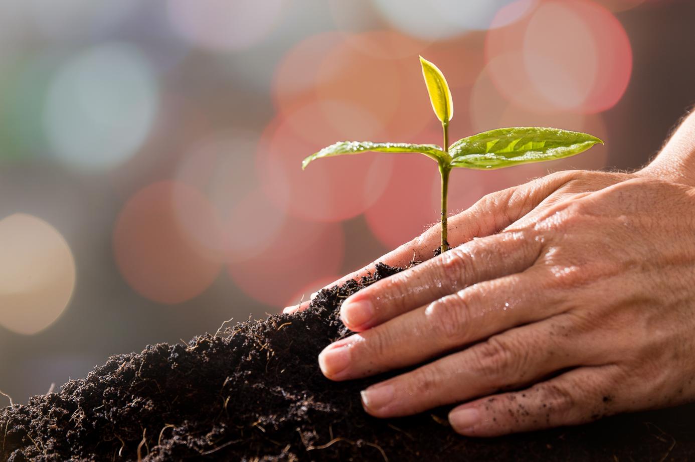 Læs om natur og miljø i Venstres principprogram.