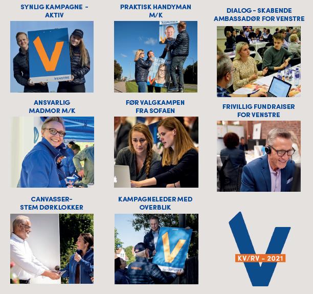 En oversigt over de forskellige frivillige roller til Venstres regionsrådsvalg 2021.
