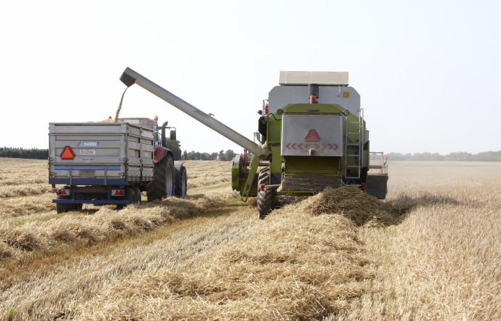 Regeringens landbrugsudspil vil betyde tab af danske arbejdspladser, skriver Venstres formand og finansordfører i fælles kronik.